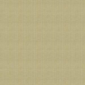 04666 Lemongrass Trend Fabric