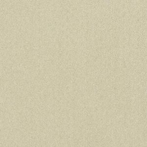 04688 Champagne Trend Fabric