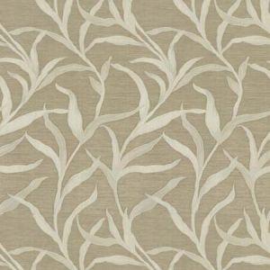 04780 Latte Trend Fabric