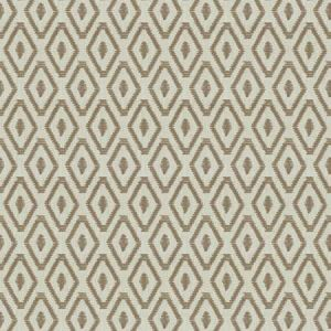 04819 Raffia Trend Fabric