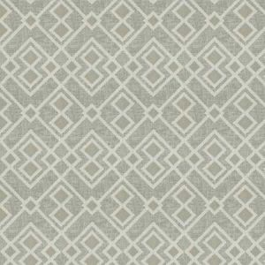 04821 Ash Trend Fabric