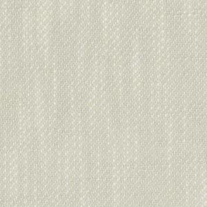 04736 Birch Trend Fabric