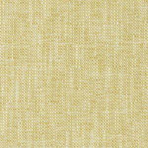 04741 Maize Trend Fabric