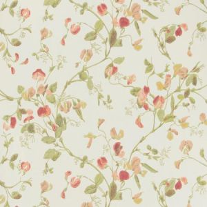 100/6028-CS SWEET PEA Pink Cole & Son Wallpaper