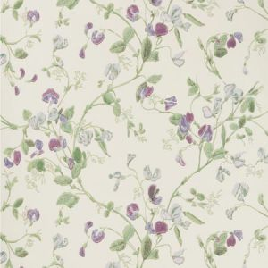 100/6030-CS SWEET PEA Violet Cole & Son Wallpaper