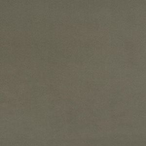 04770 Fossil Trend Fabric