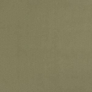 04770 Fresco Trend Fabric