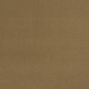04770 Nut Trend Fabric