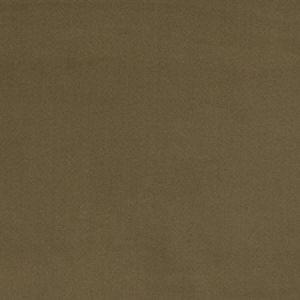 04770 Pecan Trend Fabric