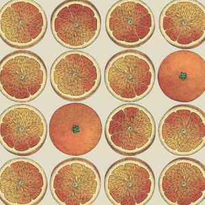114/24047-CS ARANCE Orange Cream Cole & Son Wallpaper