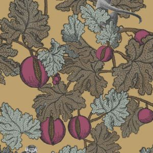 114/25049-CS FRUTTO PROIBITO Magenta Gold Cole & Son Wallpaper
