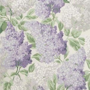 115/1004-CS LILAC Lilac Dove White Cole & Son Wallpaper