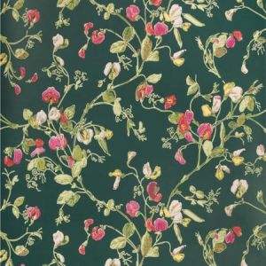 115/11033-CS SWEET PEA Cerise Magenta Viridian Cole & Son Wallpaper
