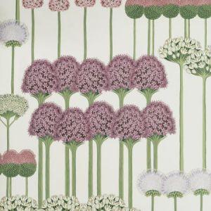115/12034-CS ALLIUM Mulberry Blush Lilac White Cole & Son Wallpaper