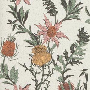 115/14043-CS THISTLE A Pink Orange Parchment Cole & Son Wallpaper