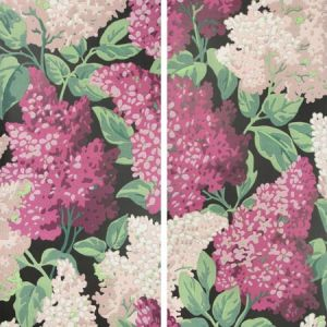 115/15045-CS LILAC GRANDIFLORA Magenta Blush Charcoal Cole & Son Wallpaper