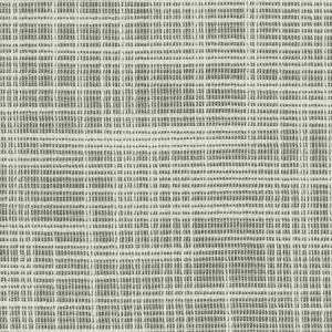 04835 Coconut Trend Fabric