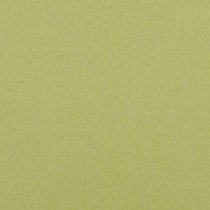 Baker Lifestyle Carnival Plain Lime Fabric