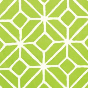 Schumacher Trellis Print Apple Fabric