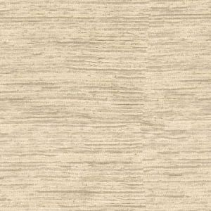Kravet Alpine Texture Pumice Fabric