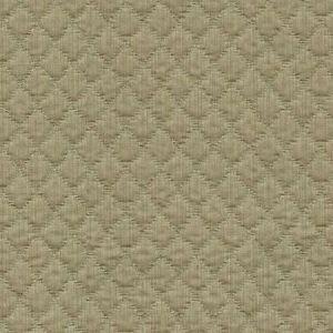 Kravet Couture Display Khaki Fabric