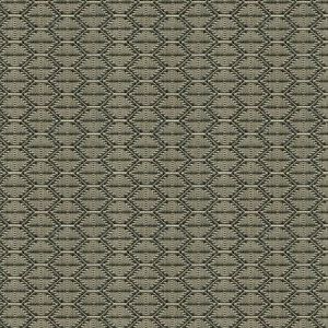 Kravet Contract Nzuri Thunder Fabric