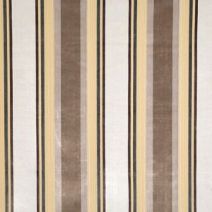Vervain Gene Stripe Platinum Fabric