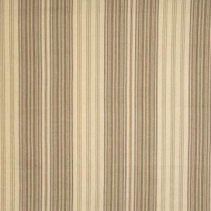 Vervain Samba Stripe Granite Fabric