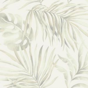 York SO2451 Paradise Palm Wallpaper