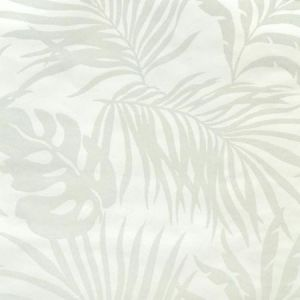York SO2491 Paradise Palm Wallpaper