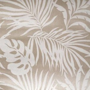 York SO2494 Paradise Palm Wallpaper