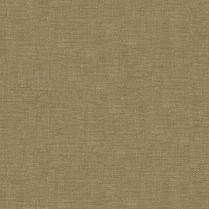 Kravet Smart 34959-6616 Fabric