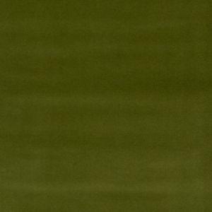 7893816 NOTTINGHAM VELVET Avocado 16 Stroheim Fabric