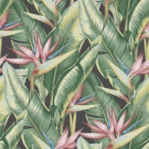 PS40201 ARCADIA Pink Banana Leaf Brewster Wallpaper