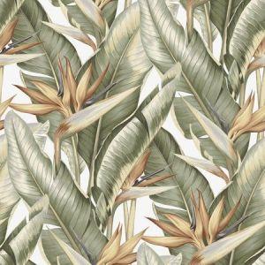 PS40204 ARCADIA Light Green Banana Leaf Brewster Wallpaper