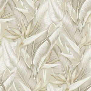PS40205 ARCADIA Beige Banana Leaf Brewster Wallpaper