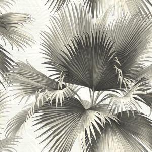 PS40100 ENDLESS SUMMER Black Palm Brewster Wallpaper