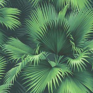 PS40104 ENDLESS SUMMER Dark Green Palm Brewster Wallpaper