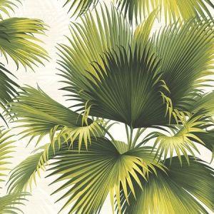 PS40114 ENDLESS SUMMER Green Palm Brewster Wallpaper