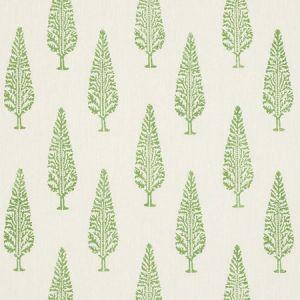 178511 JUNIPER BLOCK PRINT Green Schumacher Fabric