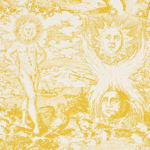 178622 MODERN TOILE Yellow Schumacher Fabric