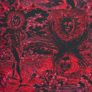 178623 MODERN TOILE Pink Black Schumacher Fabric