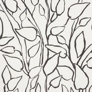 178702 SOLANDRA VINE Black Schumacher Fabric