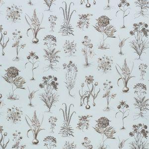 178750 CABOT BOTANICAL Sky Schumacher Fabric