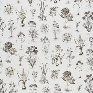 178751 CABOT BOTANICAL Ivory Schumacher Fabric