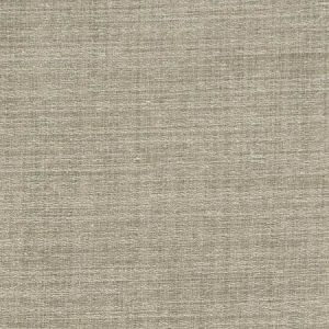 04649 Wheat Trend Fabric