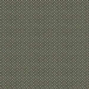 CHANDERI Laurel Stroheim Fabric