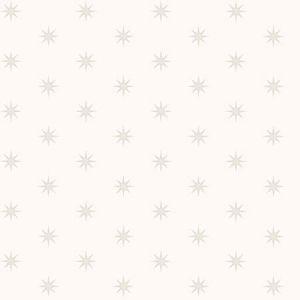 3119-13501 Tammy Starbrust Grey Brewster Wallpaper
