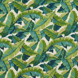 4635 Belize Charlotte Fabric