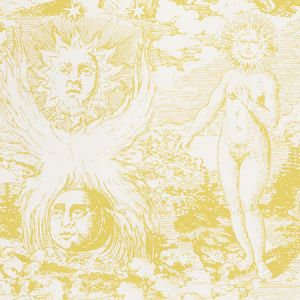 5010422 MODERN TOILE Yellow Schumacher Wallpaper